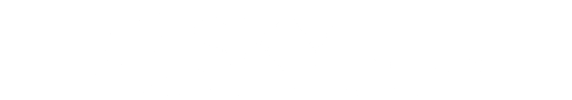 Sky Solutions Mobile Logo
